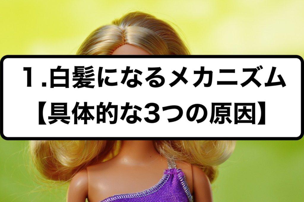 1.白髪になるメカニズム【具体的な3つの原因】