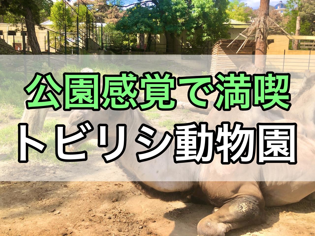 ジョージア子連れ観光する動物園